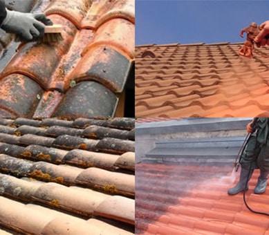 Nettoyage et démoussage de toit à Lens